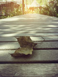 Gevallen blad op een houten brug Stock Foto