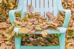 Gevallen bladeren en okkernoten op de tuinlanterfanter Stock Fotografie
