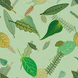Gevallen boombladeren met een aanraking van munt royalty-vrije illustratie