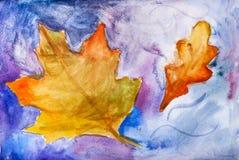 Gevallen esdoorn en eiken bladeren op blauw Royalty-vrije Stock Afbeeldingen