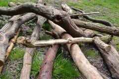 Gevallen hout bij Hoge Rotsen, Tunbridge-Putten, Kent, het UK Stock Foto