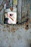 Gevangen Hond Stock Foto's