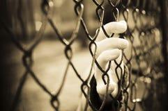 Gevangene Stock Afbeelding