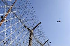 Gevangenisomheining Stock Afbeelding