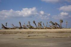 Geveegde wind stock foto