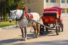 Gevlekt paard in rood toestel met een Russische traditie Royalty-vrije Stock Foto's