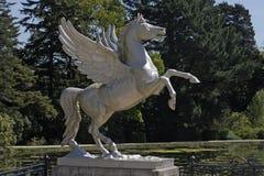 Gevleugeld paard Stock Fotografie