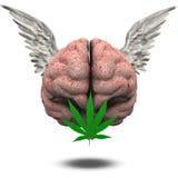 Gevleugelde Hersenen met Marihuana Stock Fotografie