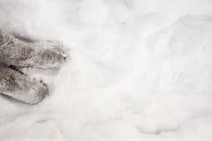 Gevoelde laarzen in sneeuw. Royalty-vrije Stock Afbeeldingen