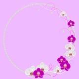 Gevoelig kader met orchideebloemen en parels  stock illustratie