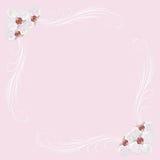 Gevoelig kader met orchideebloemen op roze vector illustratie