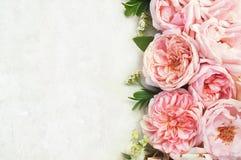 Gevoelig nam de achtergrond van de bloemenpastelkleur toe stock afbeeldingen