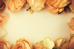 Gevoelige achtergrond met langzaam verdwenen rozen in uitstekende stijl Stock Afbeeldingen