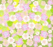 Gevoelige bloemenachtergrond Stock Foto