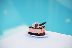 Gevoelige cake Stock Afbeelding