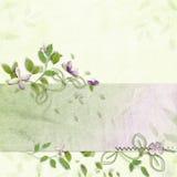 Gevoelige de lenteachtergrond Stock Afbeelding