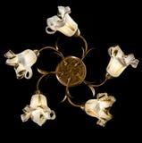 Gevoelige die kroonluchter van bloemlampen op zwarte worden geïsoleerd Stock Afbeelding