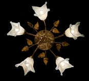 Gevoelige die kroonluchter van bloemlampen op zwarte worden geïsoleerd Royalty-vrije Stock Afbeeldingen
