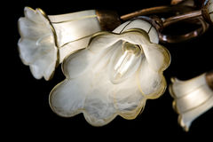 Gevoelige die kroonluchter van bloemlampen op zwarte worden geïsoleerd Royalty-vrije Stock Afbeelding
