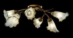 Gevoelige die kroonluchter van bloemlampen op zwarte worden geïsoleerd Royalty-vrije Stock Foto