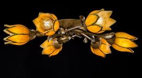 Gevoelige die kroonluchter van bloemlampen op zwarte worden geïsoleerd Stock Foto
