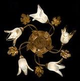 Gevoelige kroonluchter van bloemlampen op zwarte Stock Fotografie