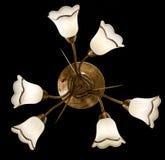 Gevoelige kroonluchter van witte bloemlampen op zwarte Stock Afbeelding