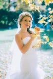 Gevoelige mooie bruid met een witte kleding Stock Afbeeldingen