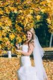 Gevoelige mooie bruid met een witte kleding Royalty-vrije Stock Fotografie