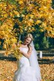 Gevoelige mooie bruid met een witte kleding Stock Afbeelding