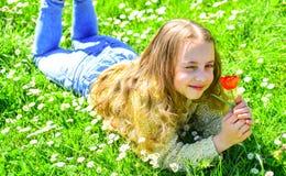 Gevoeligheidsconcept Het kind geniet de lente van zonnige dag terwijl het liggen bij weide met madeliefjebloemen Meisje dat op gr royalty-vrije stock fotografie