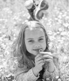 Gevoeligheidsconcept Het meisje op het glimlachen gezicht houdt madeliefjebloem, snuift aroma Het kind geniet de lente van zonnig stock afbeelding