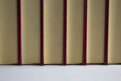 Gevoerde boeken royalty-vrije stock foto
