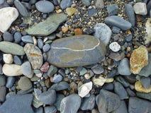 Gevoerde Steen op het Strand Royalty-vrije Stock Fotografie
