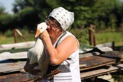 Gevogeltelandbouwbedrijf - een vrouwen voedende ganzen Stock Fotografie