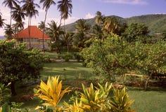 Gevonden paradijs stock afbeelding