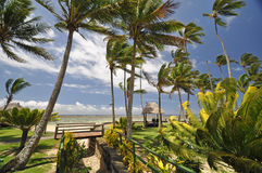 Gevonden paradijs Stock Foto