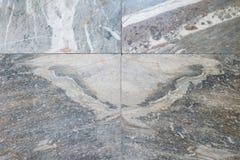 Gevormd marmer (blik zoals vlinder), Marmeren textuurvloer royalty-vrije stock foto