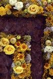 Gevormd perceel van bloembed Stock Foto