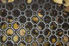 Gevormde metaalgrill en natte gele esdoornbladeren stock afbeeldingen