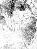 Gevormde zwarte, grijze en witte achtergrond stock afbeelding