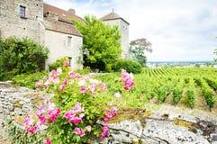 Gevrey-Chambertin Castle Stock Image
