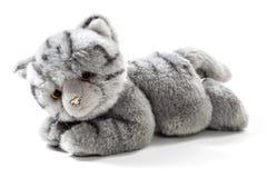 Gevulde dierlijke kat stock afbeeldingen