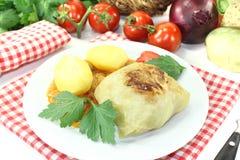 Gevulde kool met aardappels en peterselie Royalty-vrije Stock Foto's
