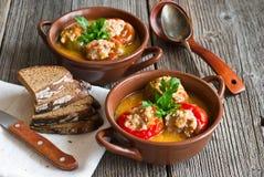 Gevulde paprika met vlees Royalty-vrije Stock Fotografie