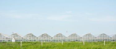 Gewächshäuser für wachsendes Gemüse Stockfotos