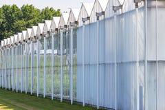 Gewächshäuser mit Reflexion eines LKWs auf der Landstraße A12 nahe Zoetermeer, die Niederlande Stockfotos