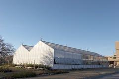 Gewächshaus Stockbild