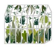 gewächshaus Botanischer Garten mit tropischen Anlagen, Palmen, Lianen Getrennte Nachricht auf weißem Hintergrund vektor abbildung