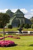 Gewächshaus am britischen Garten von Schoenbrunn Lizenzfreie Stockbilder